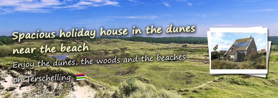 Spacious holiday house in the dunes